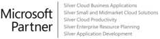 Microsoft Silver Partner Logo - With Competencies